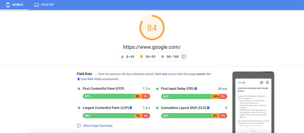 PageSpeed Insights report on Google website